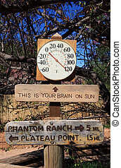 chaud, thermomètre, signe