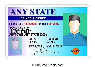 chauffeur, mâle, licence, isolé