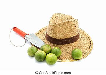 chaux, paille, truelle, main, chapeau blanc
