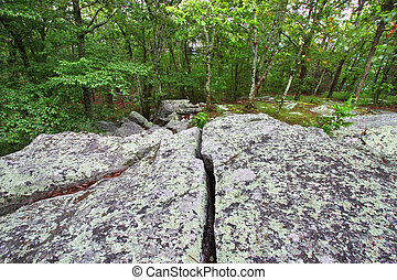 Cheaha State Park - Alabama - Rocks scatter the landscape at...