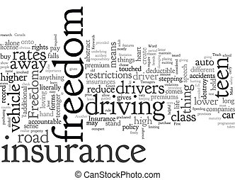 Cheap Auto Insurance For Teenagers text background wordcloud concept