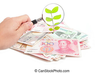 check green plant from money