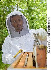 checking the honey