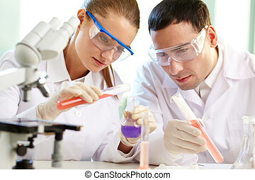Checking up chemical reaction - Portrait of two chemists ...