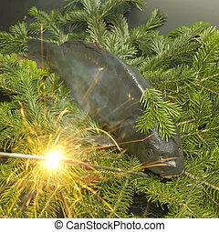 checo,  (christmas, navidad,  carp), Tradición
