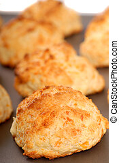 Cheddar cheese biscuits on a cookie sheet - Freshly baked...