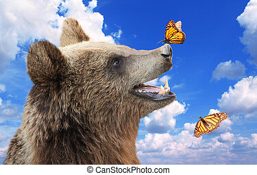 Cheerful brown bear with butterfly sitting on his nose