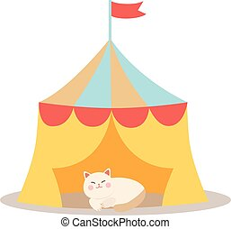 Cheerful circus playing cats vector illustration.