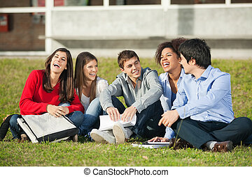 Cheerful College Students Sitting On Grass At Campus -...