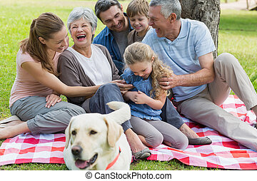 Cheerful extended family sitting on