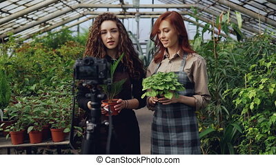 Cheerful female gardeners in aprons are talking and holding...