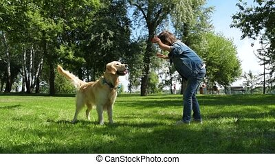 Cheerful little boy training his dog in the park