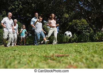 Cheerful multi generation family playing football in the ...