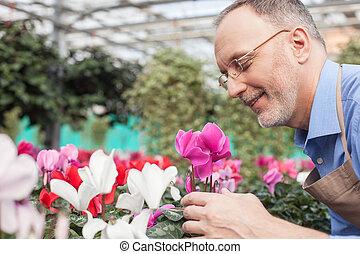 Cheerful old garden worker is working with joy