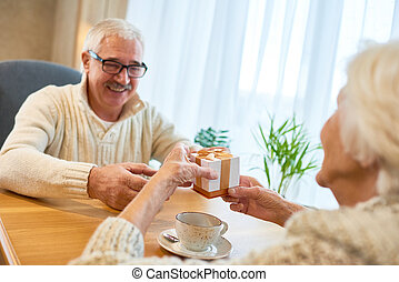 Cheerful Senior Couple Celebrating Valentines Day