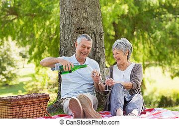 Cheerful senior couple having champagne at park - Cheerful...