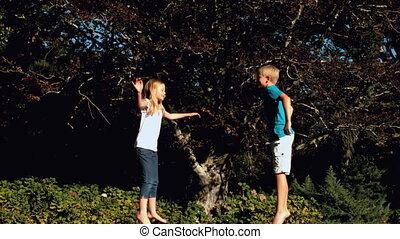 Cheerful siblings having fun on a t