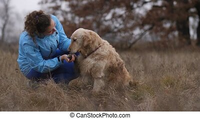 Cheerful woman caressing her labrador retriever - Positive...