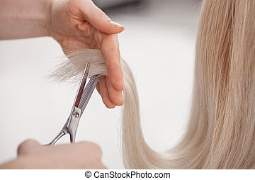 Close up of hands of hairstylist cutting female blond hair with scissors