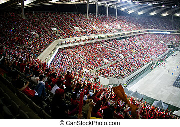 Cheering crowd at World Cup Stadium in South Korea