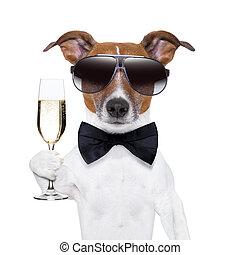 cheers dog with  a glass of champagne