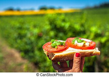 Cheese baguette with tomato