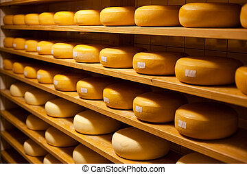 Cheese cellar - Cheese with raclette in ripening cellar in a...