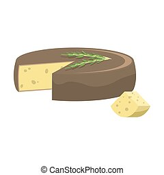 Cheese head with fresh rosemary herb on it vector illustration