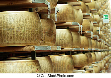 cheese maturing storehouse - wheels of cheese on the racks ...