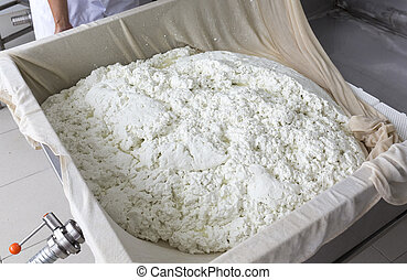 Cheese production buffalo gauze lint - A woman working in a...