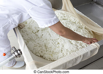 Cheese production creamery dairy final - A woman working in...