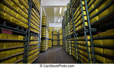 Cheese storage at food factory. Dairy factory warehouse. ...