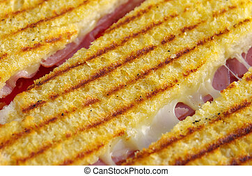 Cheese Toast - Close-up on a delicious looking toast with...