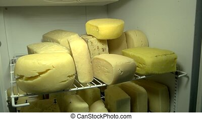 Cheese wheels on the shelves in dairy factory. Warehouse...