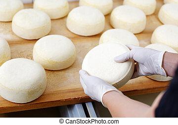 cheese-wheels, vérifié, jeune, cheesemaker