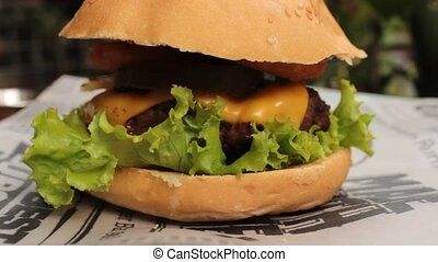 Cheeseburger Sandwich On Bun