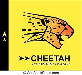 cheetah, coloured roaring cheetah.