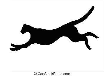 Cheetah - Illustration of wild animal, family of cats