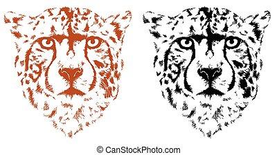 cheetah heads