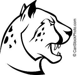 cheetah, hoofd