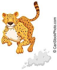 Cheetah - Cute cheetah sitting with tail up