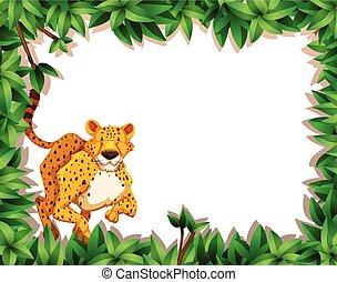 Cheetah in nature scene