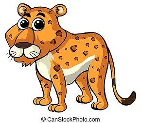 Cheetah on white background