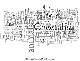 Cheetah text background wordcloud concept