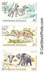 Cheetah, zebras, elephants post stamps