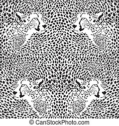 cheetahs background