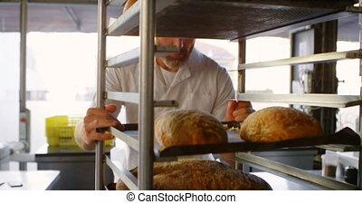 chef cuistot, boulangerie, mâle, 4k, pousser, chariot