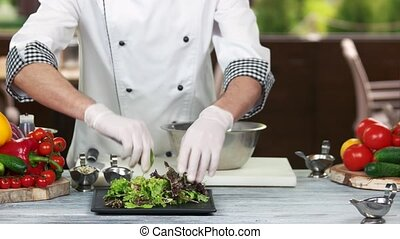 Chef making salad, kitchen table. Green and red lettuce.