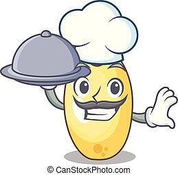 Chef with food cedar pine nuts on a cartoon