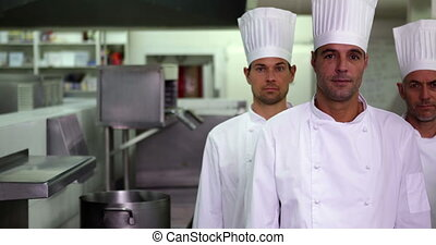 chefs, appareil photo, sérieux, quatre, regarder